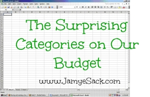 the surprising categories on our budget with title