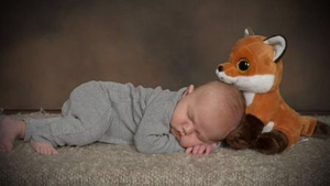 benjamin-and-fox-pic